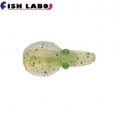 FISH LABO ShincoChan 0.8inch(피쉬 라보 신코챈 0.8인치)